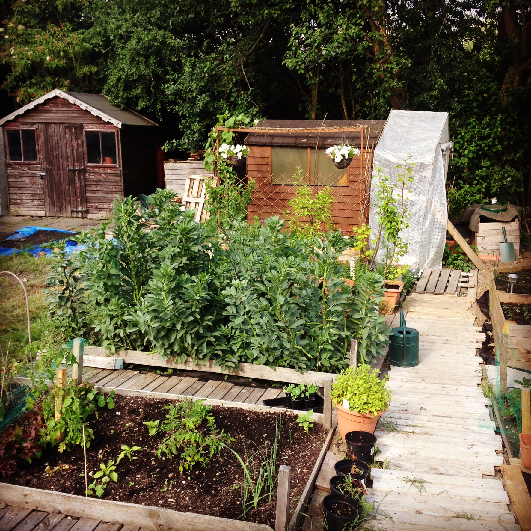 Gardening Year