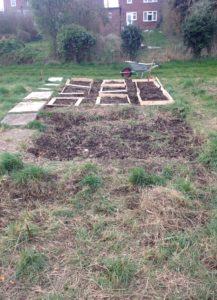 Laying out the allotment
