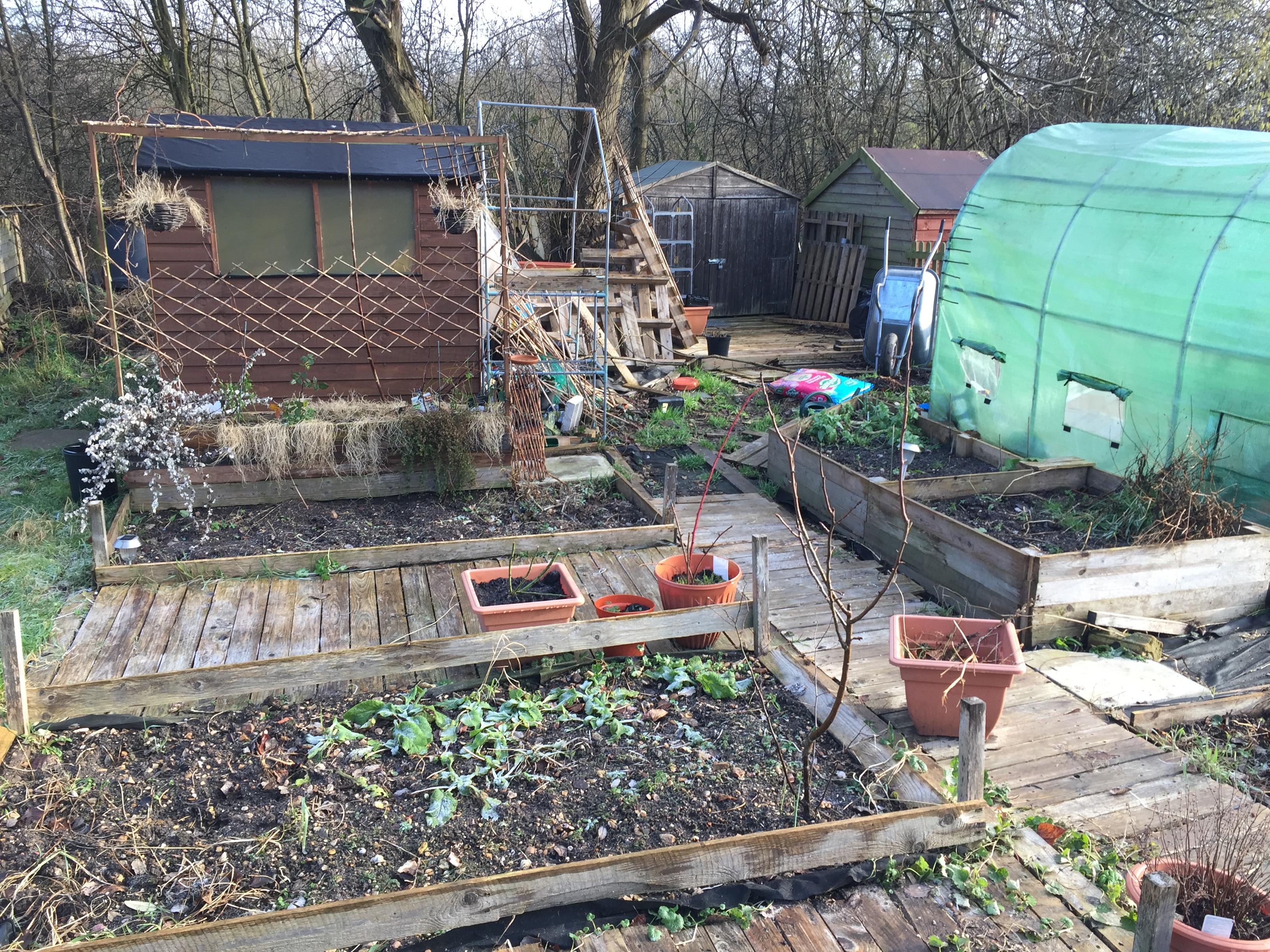 Garden Jobs in February